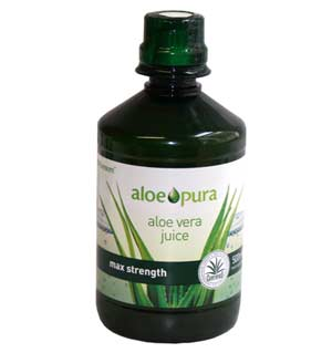 How to maintain a healthy aloe plant