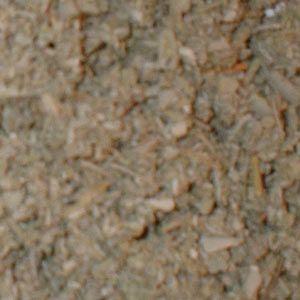 Bulk Sage Herb 500g (Salvia officinalis)